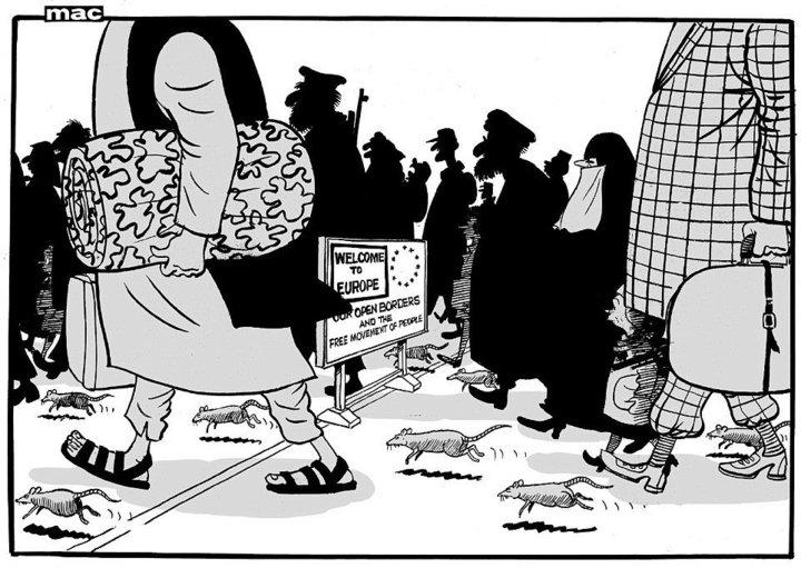 Daily Mail vermin cartoon